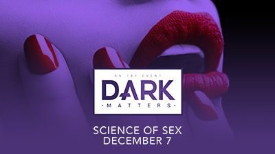 insight presents at dark matters
