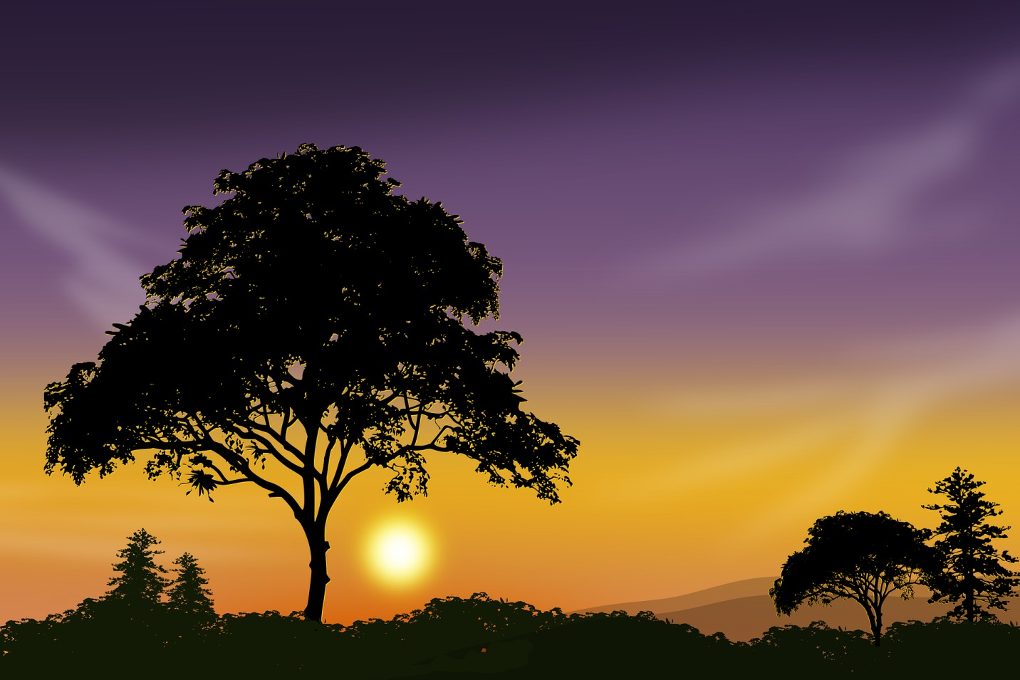 tree-silhouette-against-purple-sky1432px